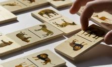Photo of animal dominoes