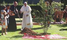Pope Francis plants a tree in the Vatican Gardens in a Service to dedicate the Synod of Bishops for the Pan-Amazon Region to St Francis of Assisi (Photo: Julian Filochowski)