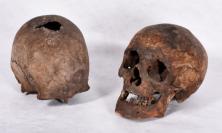 The Holywell Skulls (Property of the British Jesuit Province. Image copyright Stonyhurst College)