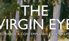 Cover of 'The Virgin Eye'
