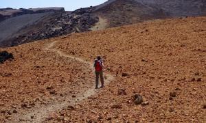 Walking in the desert